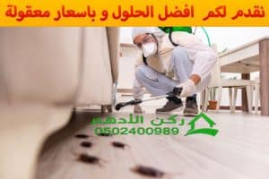 رش مبيدات بالدمام