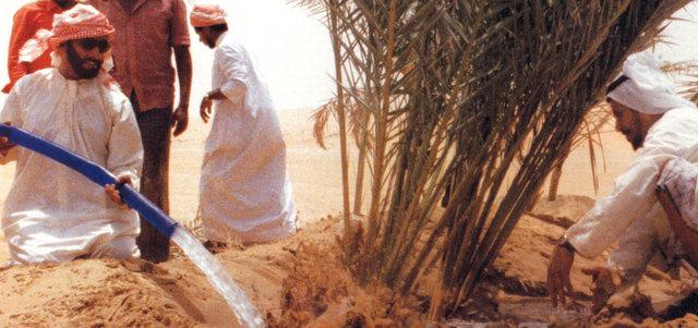حضارة الخليج القديمة